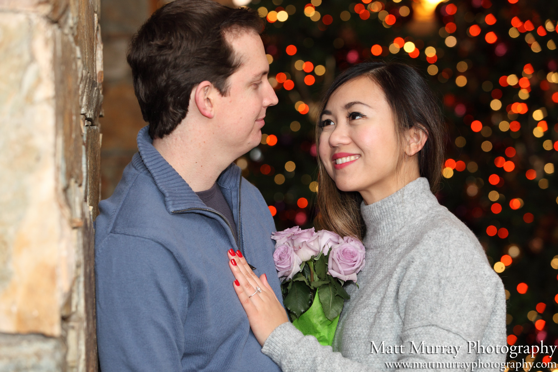 Professional Engagement Portrait Photography